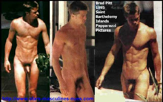 Remarkable, rather brad pitt homo porno suggest you