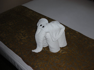 towel animal elephant