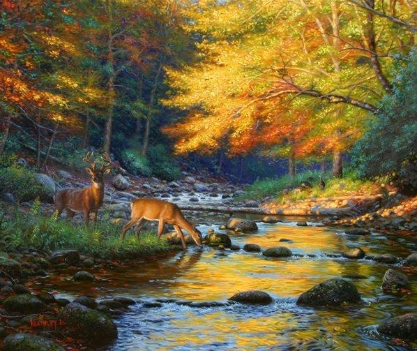 THE SCRAPBOOK: Autumn Woods