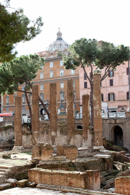 Largo di torre Argentina-Roma