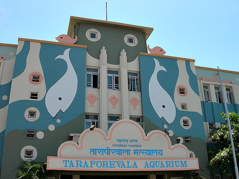 taraporevala aquarium in mumbai by kunal bhatia