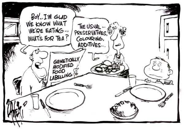 Controversy in Food?: GMO Cartoons....
