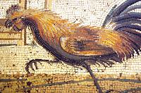 mosaico romano. Museu de Nápoles