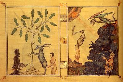 herbário, c.1320, Biblioteca Nacional de Florença