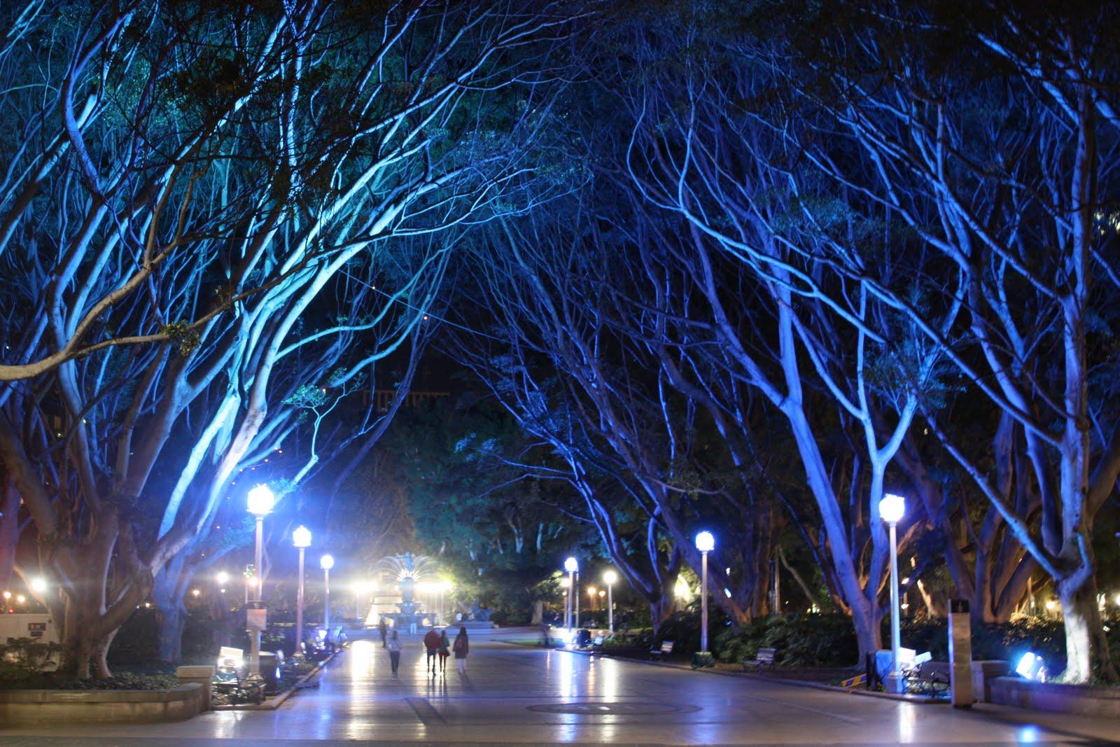 Sydney City And Suburbs Hyde Park Vivid Sydney