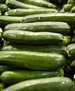 [zucchini-773616.jpg]