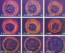 Kesehatan - Neoplasma dan Perbedaan Kanker dengan Tumor ...