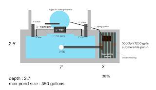 kolam ikan hiasan: konsep dalam pembuatan kolam ikan hiasan