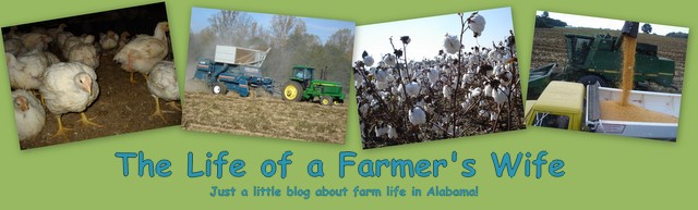 The Life of a Farmer's Wife