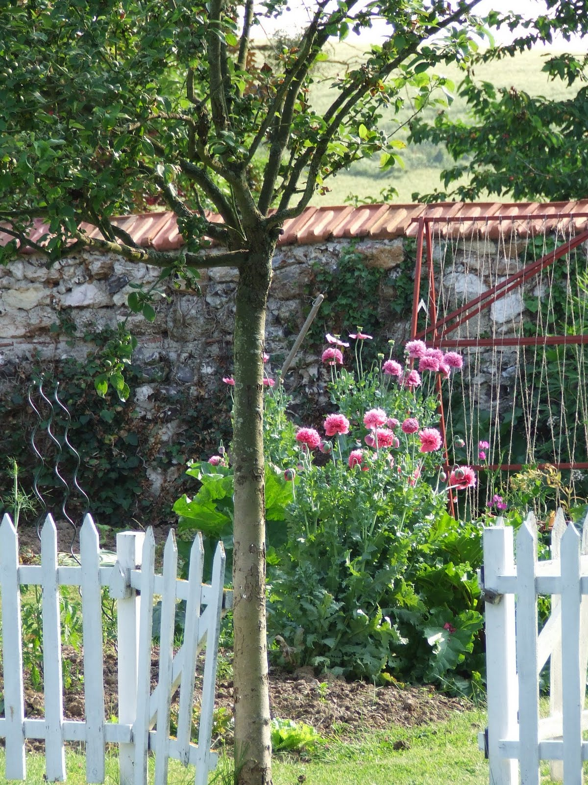 French Country Garden Gate
