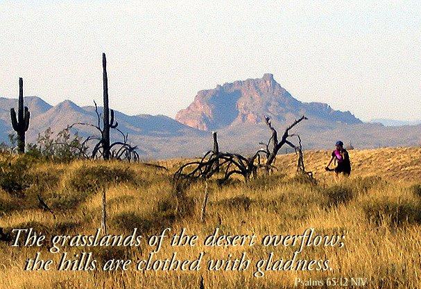 [Sativa's+grasslands+and+verse.jpg]
