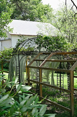 Diy Show Off Diy Grape Arbor And Gazebo Diy Show Off