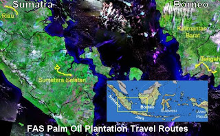 FAS Palm Oil Plantation Travel Routers