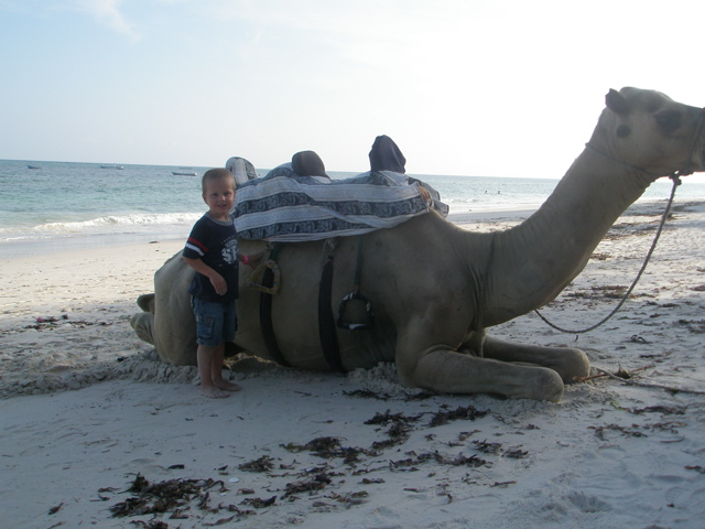 [Noah+Camel.jpg]