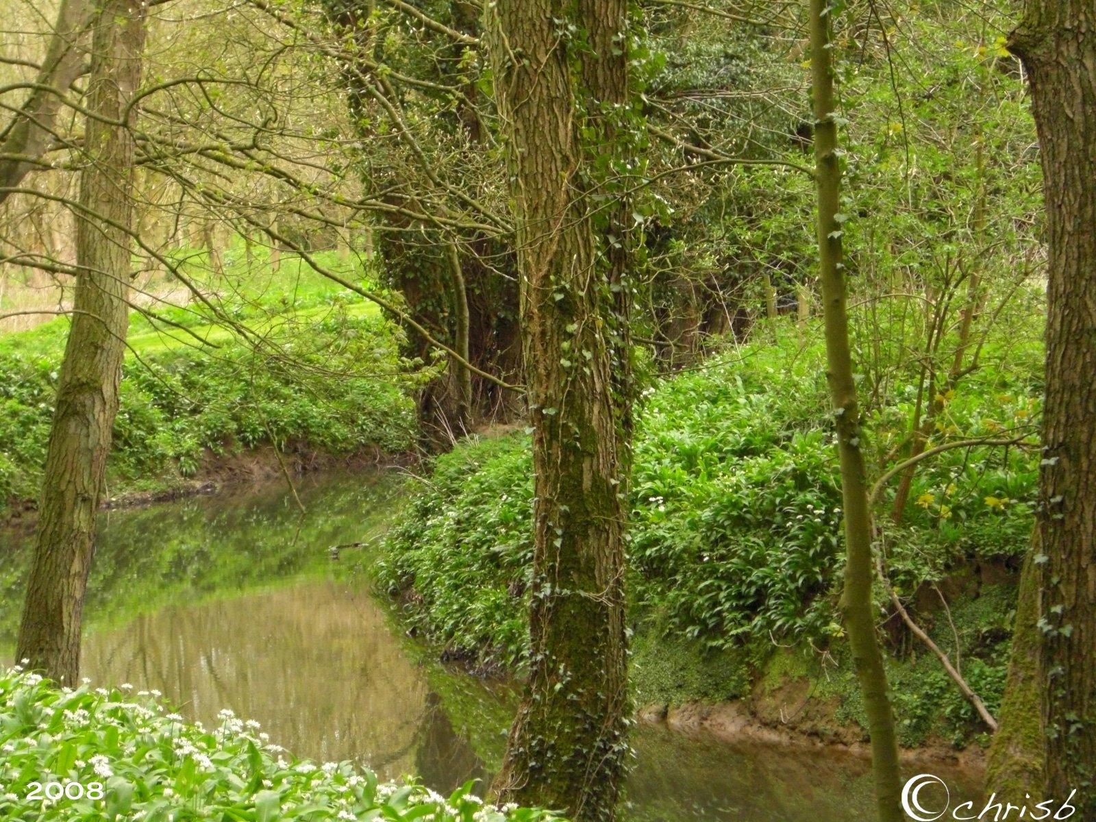 [river2.jpg]