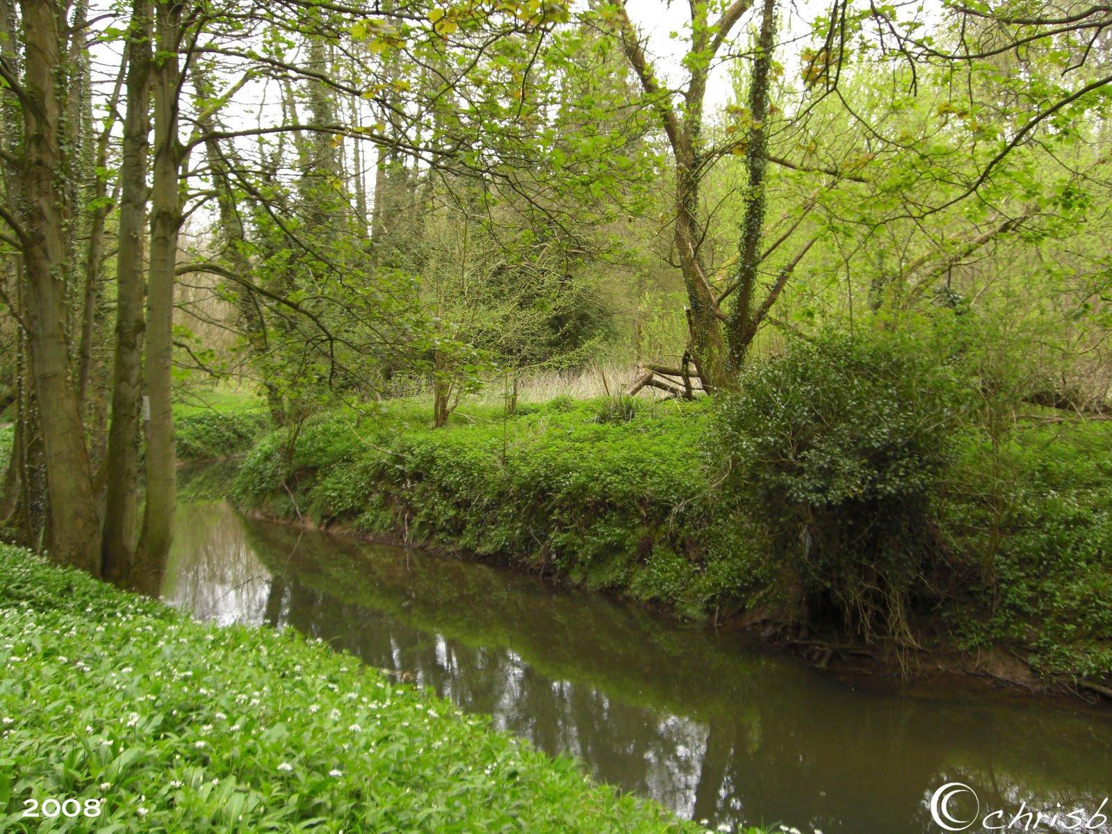 [river3.jpg]