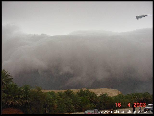 [Rain+in+the+desert+7.jpg]