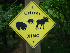Critter Count