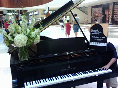 Steinway D at the Natick Collection