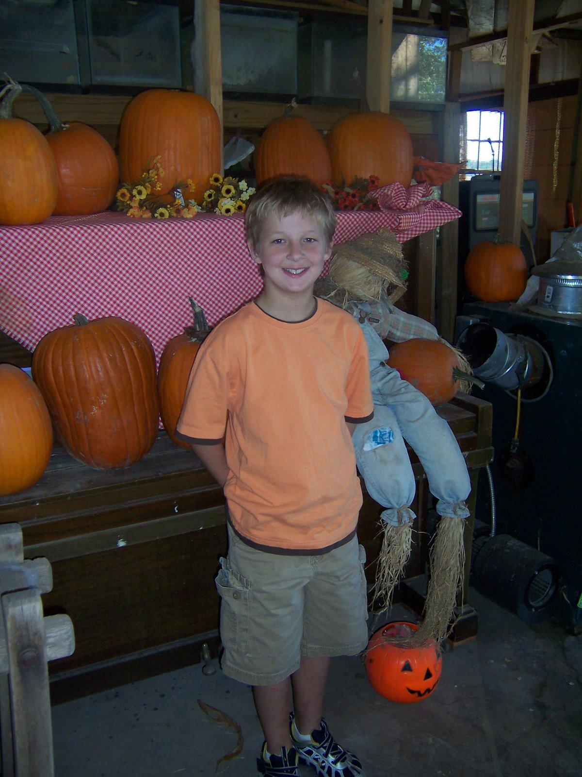 [pumpkin+patch+2007+001.jpg]