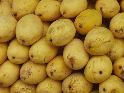 mangoes Samal Island Mangoes