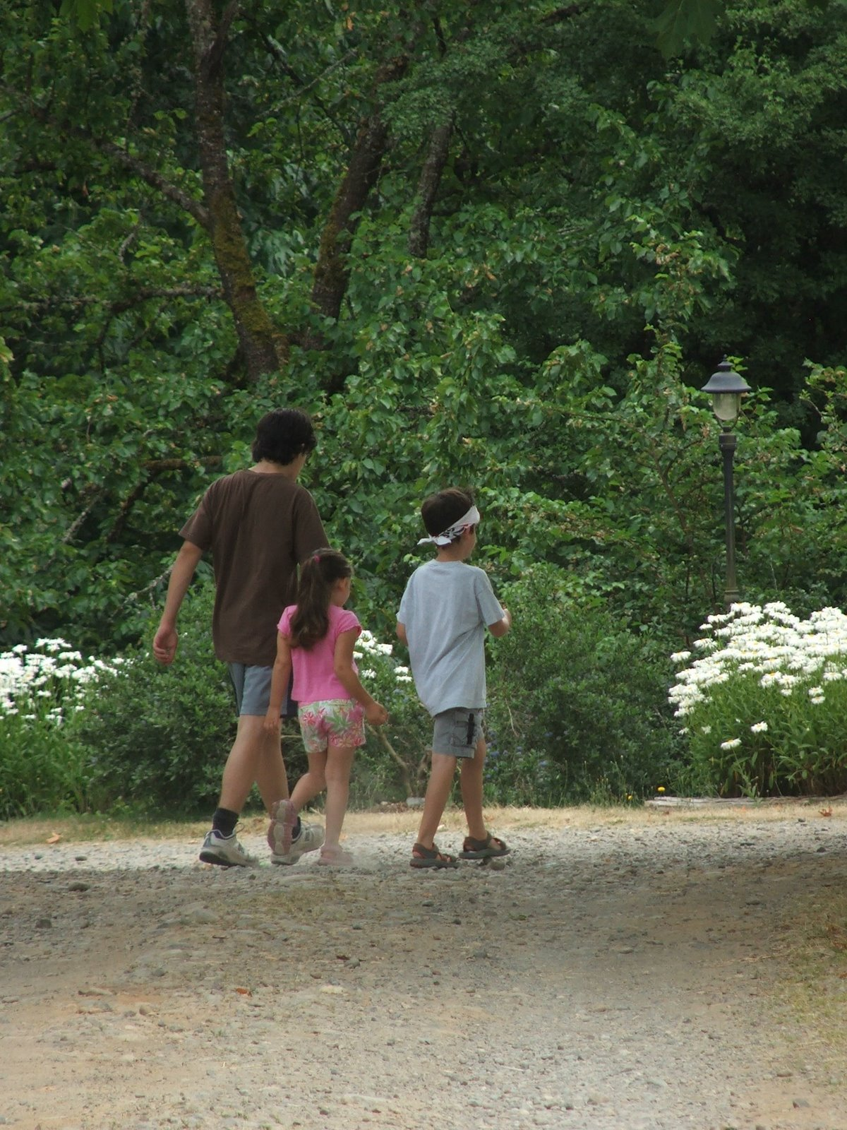 [kids+on+fairburn+farm+july2007.JPG]