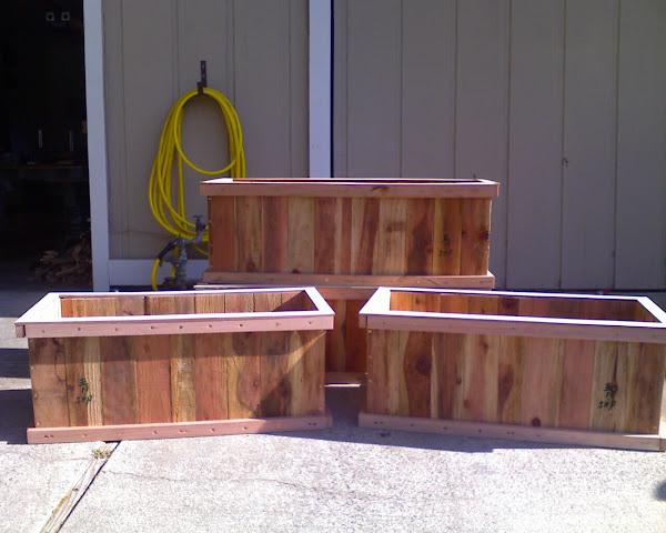 My Garden Boxes