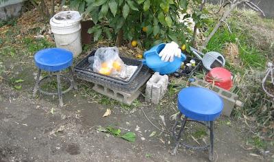 Soles worn thin: Growing Your Own in Hirakata