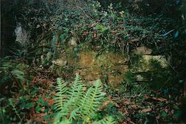 Parte da muralla sur da fortaleza de Outes