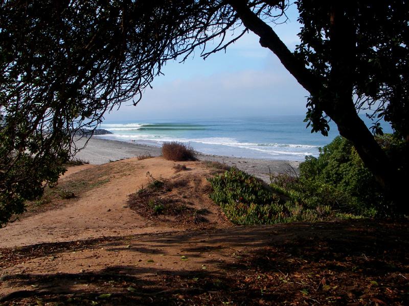 photo de surf 1496