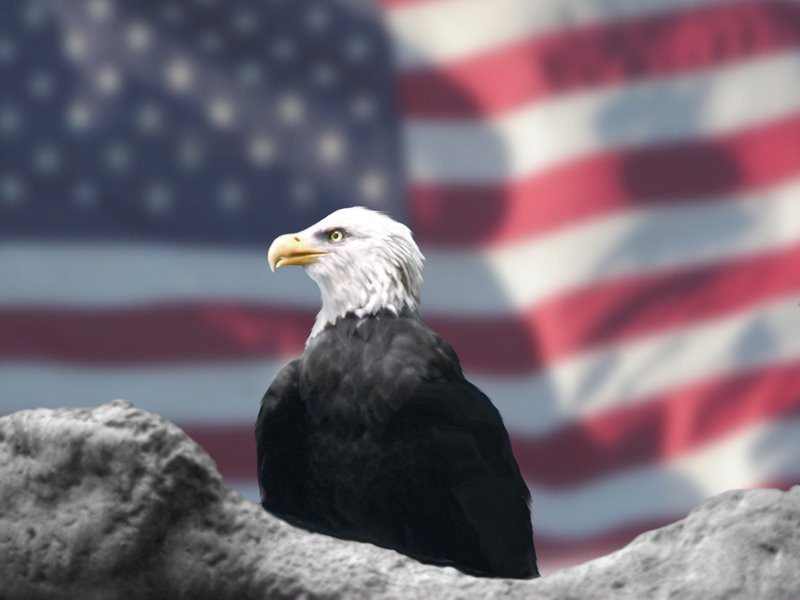 [Eagle_and_American_Flag_by_Bubbels.jpg]