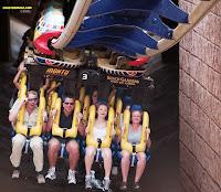 Montu Roller Coaster - Busch Gardens Africa