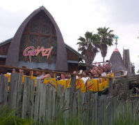 Gwazi - Busch Gardens Africa - Reviews
