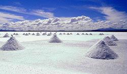 Actualidad en Bolivia