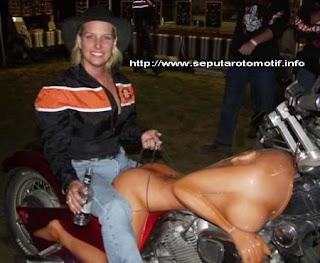 Harley DaVIVIDson 01