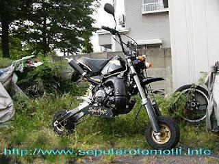 Motor Mini 01