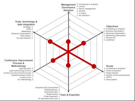 immeria: Web Analytics Maturity Model: Case Study of