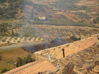 forest fires in calabria, southern italy