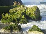 Roca de Punta de Care