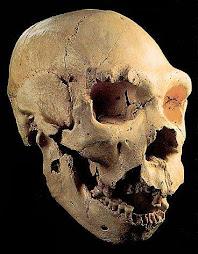 La evolución humana: los misterios de Atapuerca