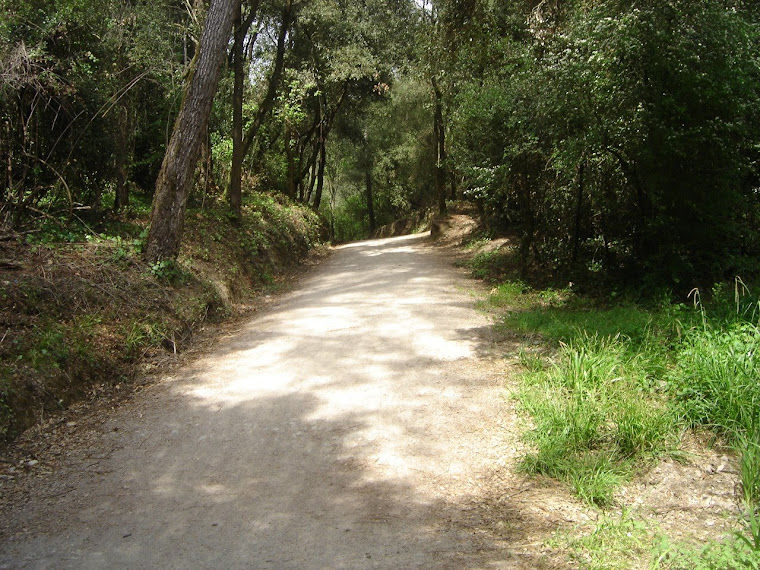 El camí és molt agradable de seguir.