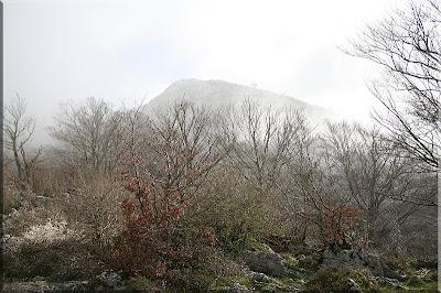 Aparece Olano entre la niebla