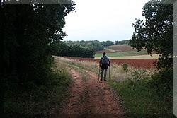 Campos de labranza junto a la pista