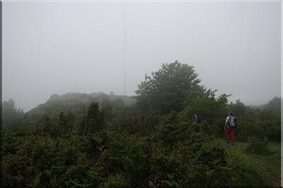 La cima entre la niebla