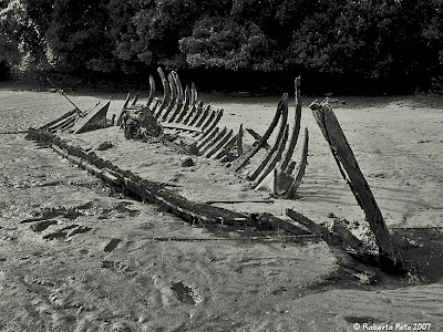 Las Sirenas :D