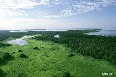 A AMAZÔNIA É NOSSA