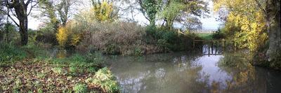 Pond panorama Nov 2006