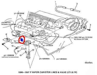 Lt1 Firing Order Diagram Wiring Diagram Library