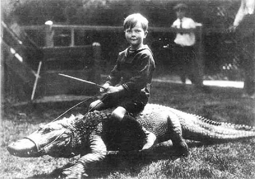 Vintage Child Abuse Gator Rides Are Fun But They Cost An