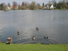 Emdrup lake, Copenhagen